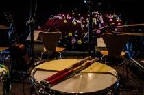 Concierto de Templeton para Guau Guau Shows en Conde Duque